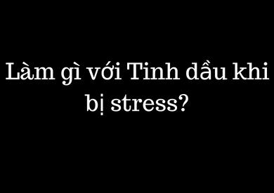 Làm gì với Tinh dầu khi bị stress??