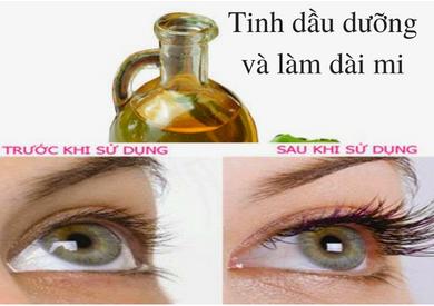 Tnh dầu dưỡng mi và làm dài lông mi?