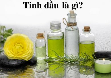Tinh dầu là gì? Công dụng của tinh dầu với đời sống và làm đẹp