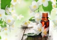 Thư giãn cơ thể với tinh dầu hoa nhài