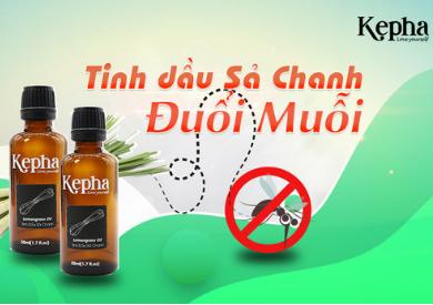 Có Tinh dầu sả chanh Không lo các vấn đề của Muỗi