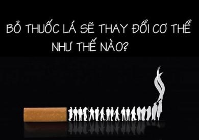 Cai thuốc lá thành công với Tinh dầu nguyên chất