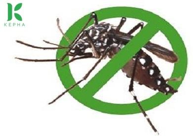 Dùng tinh dầu oải hương đuổi muỗi có hiệu quả không?