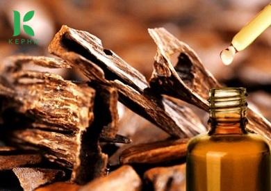 Tinh dầu trầm hương giá bao nhiêu?
