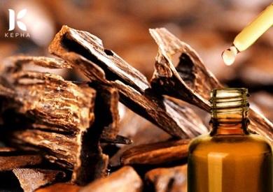 Cách làm tinh dầu trầm hương  chưng cất nguyên chất