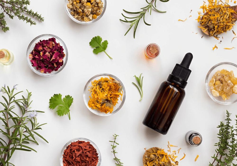 Các loại tinh dầu nên dùng để xông kháng khuẩn, virus trong đại dịch Corona