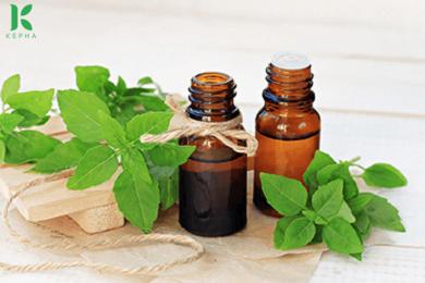Hướng dẫn cách sử dụng tinh dầu húng quế