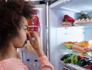 Vì sao tủ lạnh có mùi hôi thối? Tác hại và cách xử lý mùi hôi hiệu quả