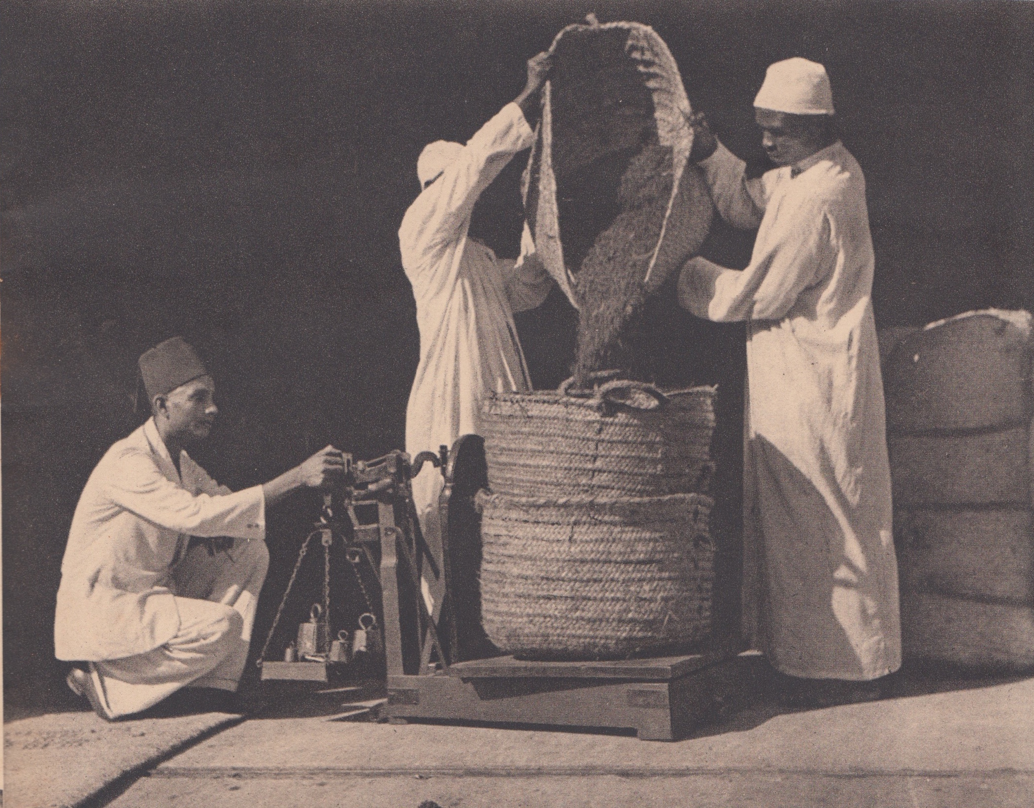 Cân Đinh Hương để xuất khẩu từ Ấn Độ