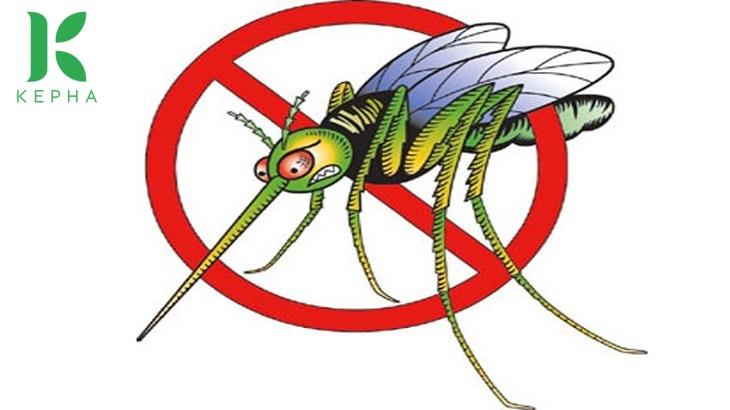 tinh dầu oải hương đuổi muỗi