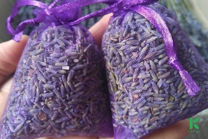 túi khô hoa oải hương